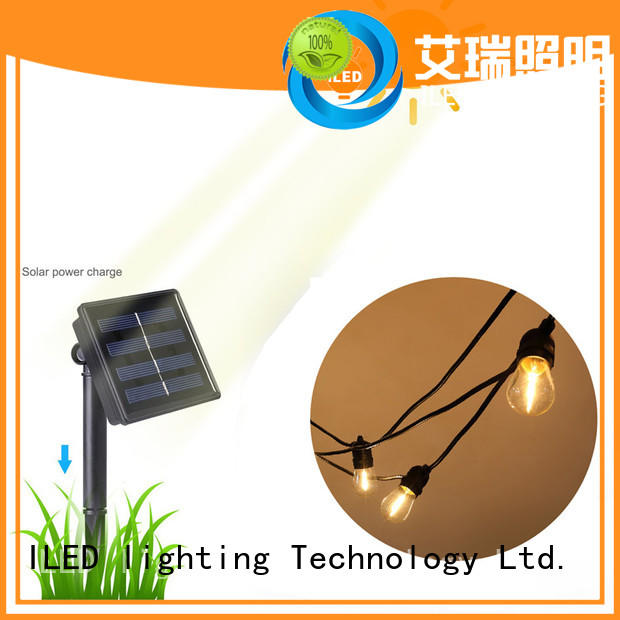 professional outdoor festoon party lights supplier for outdoor