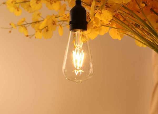 ILED 4w energy saving light bulbs series for wedding-6