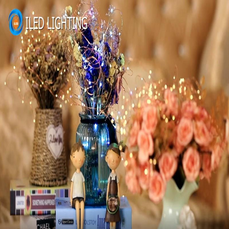 Copper Fairy Light-Home DIY