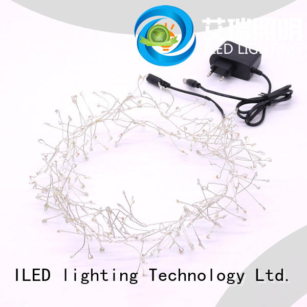 fairy lights adaptor plug manufacturer for household ILED