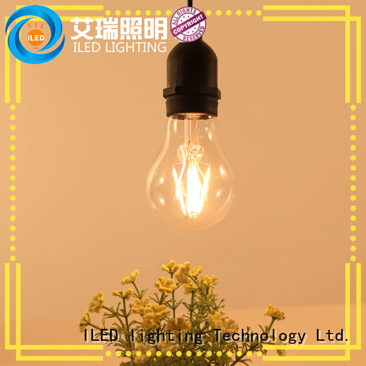 festival dimmable led light bulbs design for indoor