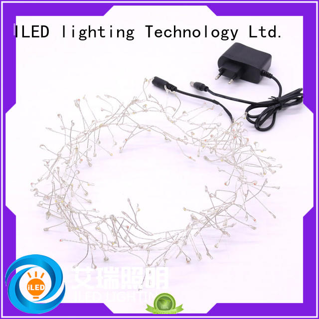 remote plug in copper wire lights supplier for bedroom