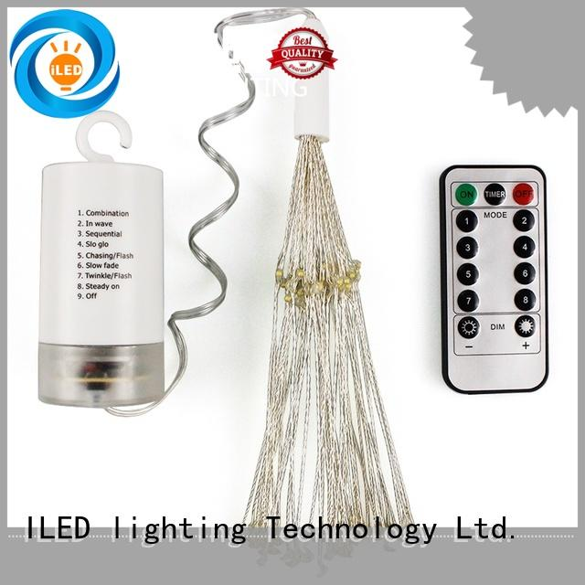 operated battery operated outdoor christmas lights supplier for indoor