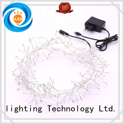 ILED plug in copper wire lights lamp for household