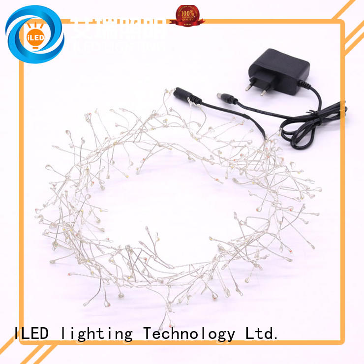 dimmable plug in twinkle lights customized for bedroom