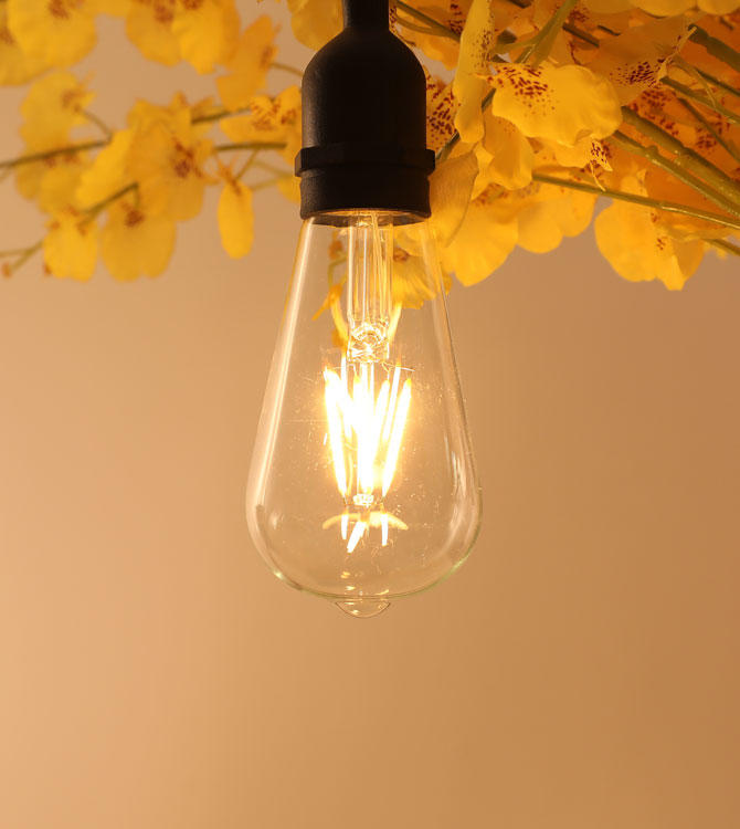 ILED 4w energy saving light bulbs series for wedding-3