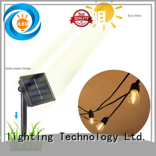 elegant solar festoon lights design for garden
