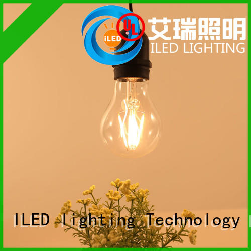 dimmable led light bulbs decor for indoor ILED