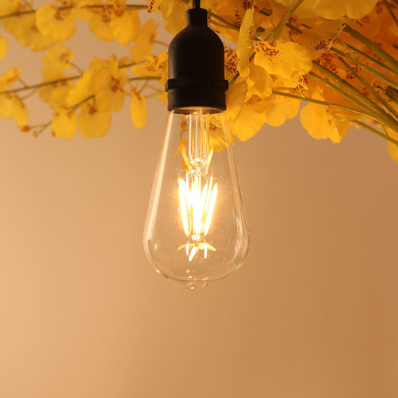ILED 4w energy saving light bulbs series for wedding-1