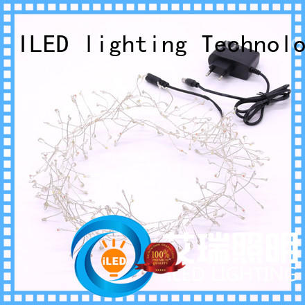 ILED plug in fairy lights customized