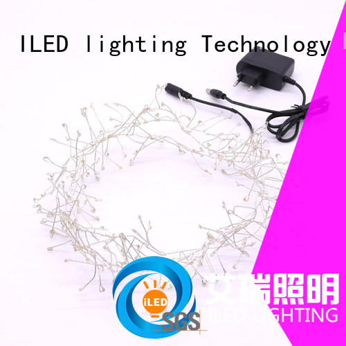 ILED operated plug in wire fairy lights personalized for christmas