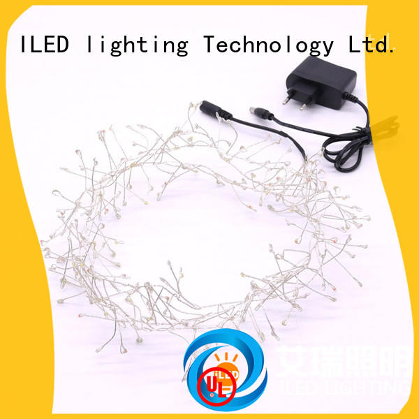 ILED plug in wire fairy lights customized for tree