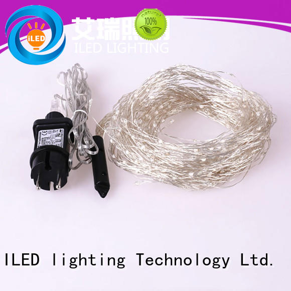 wire plug in fairy lights personalized for weddings ILED