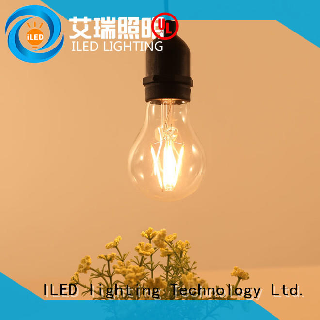 festival outdoor led light bulbs manufacturer for indoor