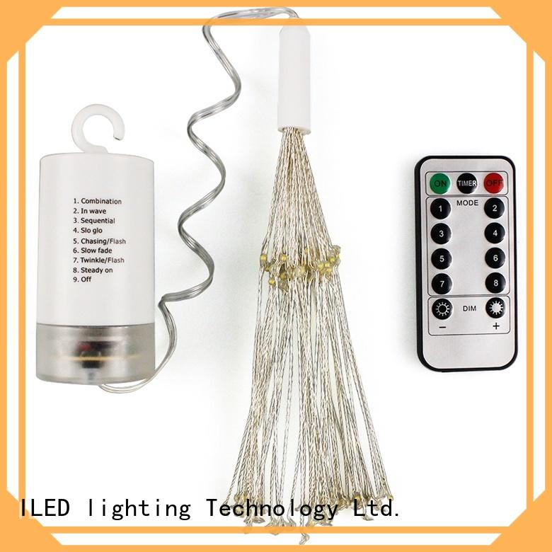 operated battery powered fairy lights supplier for bistro