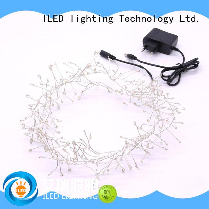 ILED operated fairy lights adaptor plug customized for weddings