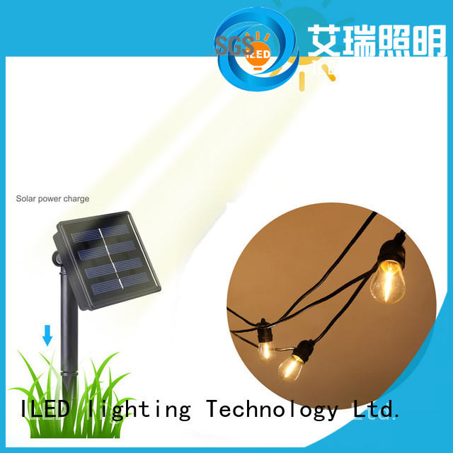 professional outdoor festoon party lightsdesignfor garden