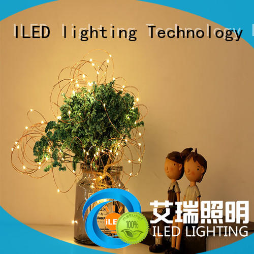 ILED battery christmas lights customized for indoor
