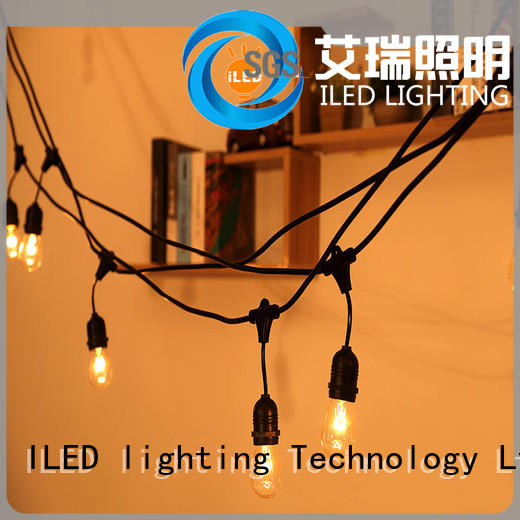 ILED decorative string lights supplier for outdoor