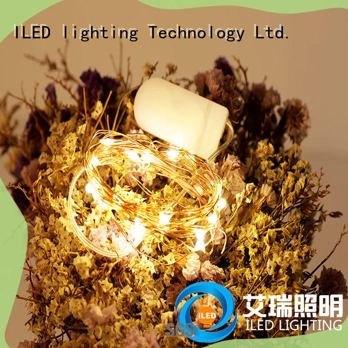 ILED waterproof copper wire lights battery operated lamp for decoration