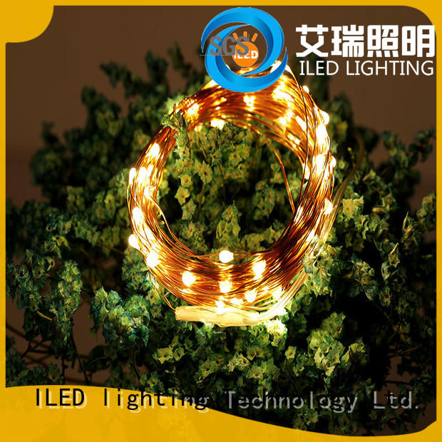 ILED remote copper wire lights battery operated manufacturer for wedding