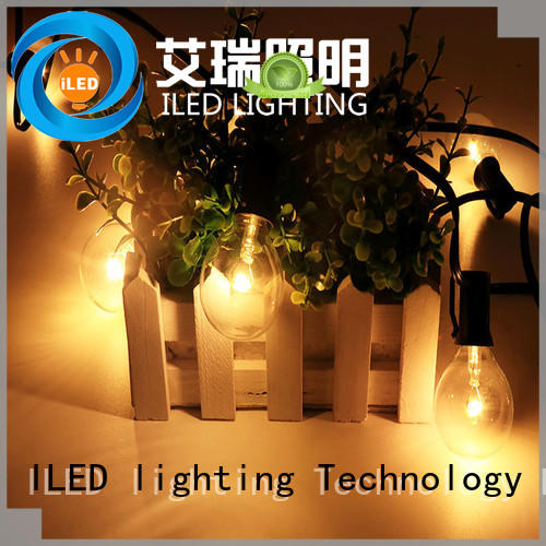 ILED standard coloured festoon lights manufacturer for indoor