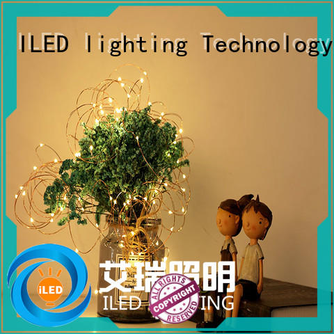 ILED remote battery operated led lights on copper wire wire for Christmas