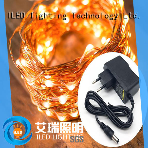ILED dimmable plug in twinkle lights supplier for party