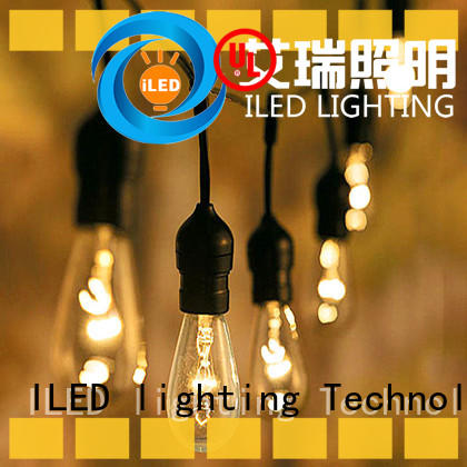 ILED commercial plug in festoon lights lamp for party