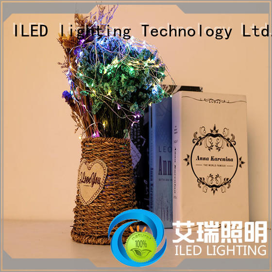 remote copper battery lights customized for wedding ILED