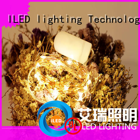 ILED copper wire lights battery operated manufacturer for Christmas