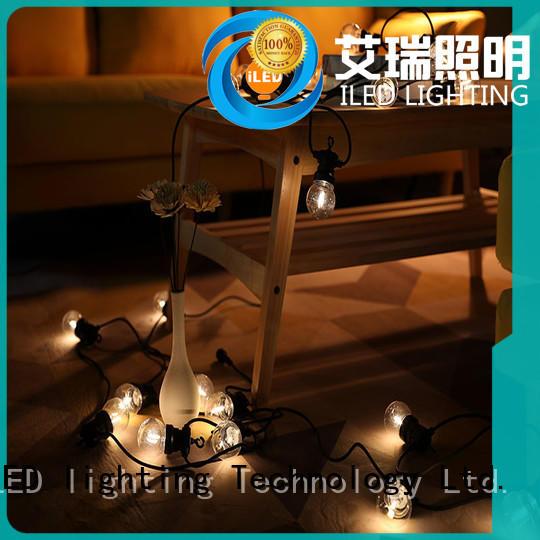 christmas festoon string lights supplier for indoor ILED