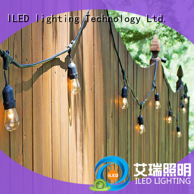 commercial indoor festoon lights lamp for outdoor ILED