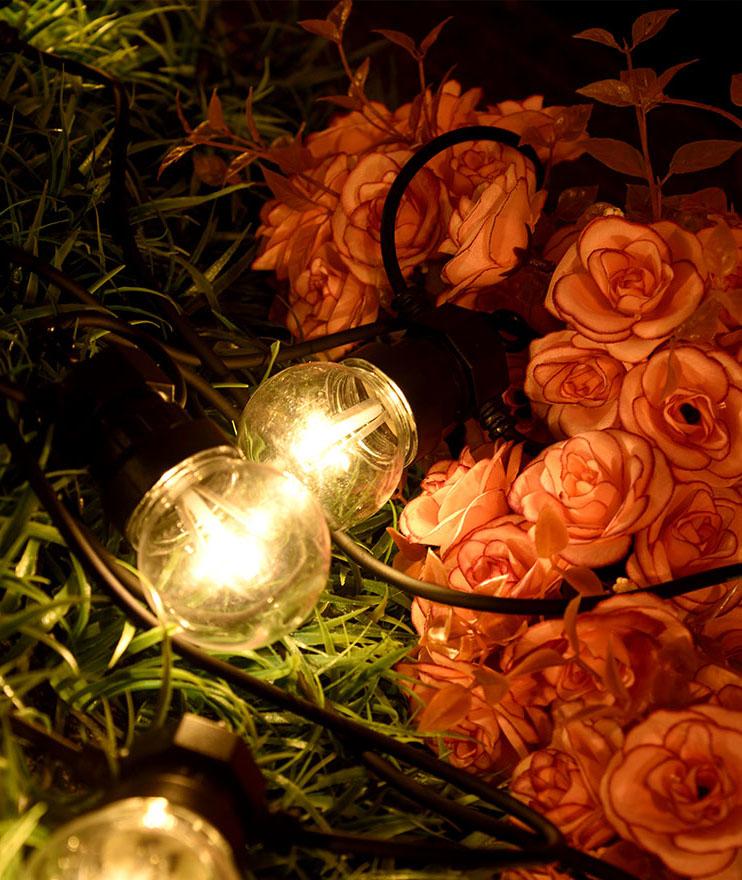 ILED novel festoon string lights design for indoor-3