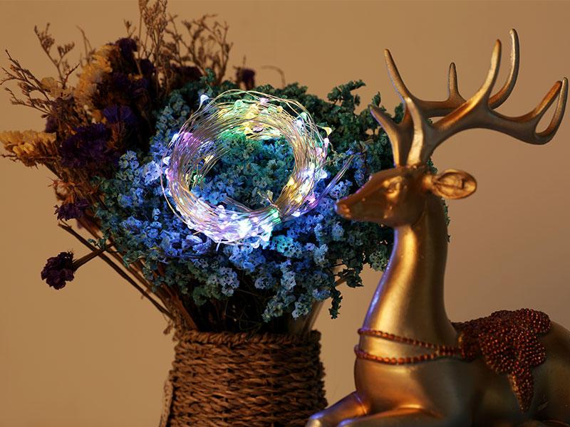 Starry Fairy USB String Light 8 Modes LED Copper string Flasher