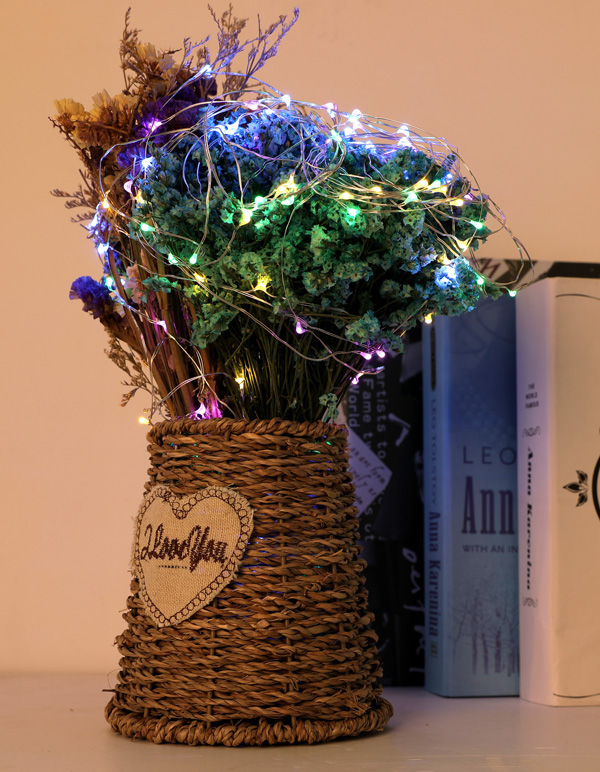 ILED copper wire fairy lights design for decoration-3
