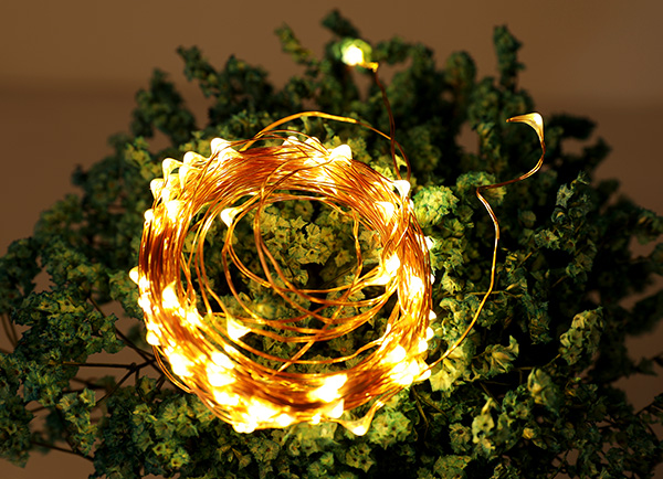 ILED white plug in fairy lights manufacturer for christmas-9