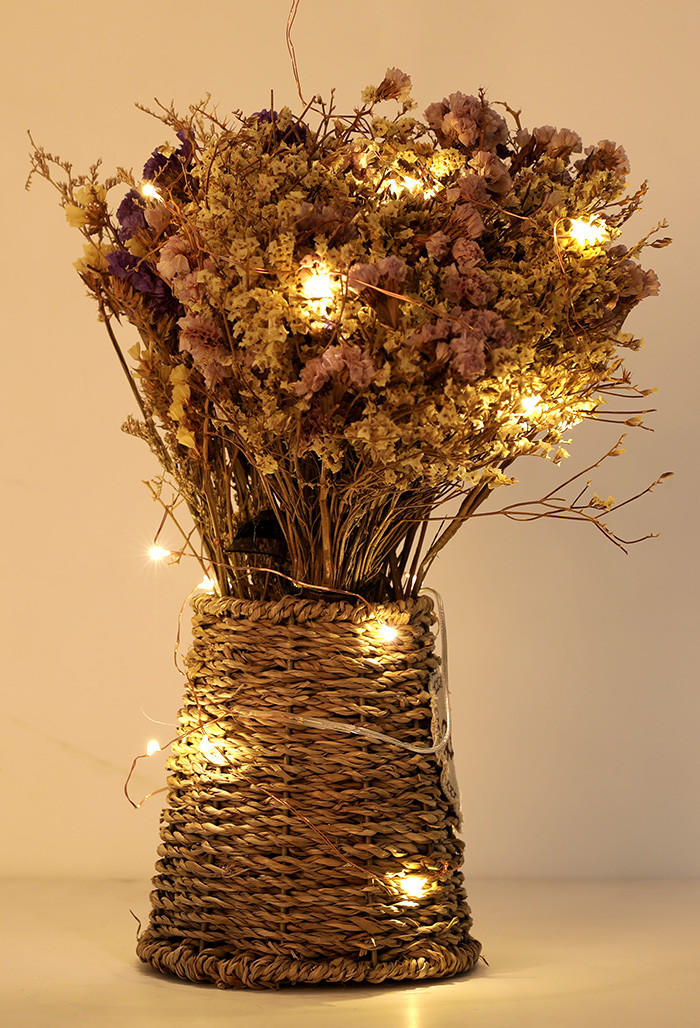 ILED operated battery powered fairy lights supplier for Christmas-3