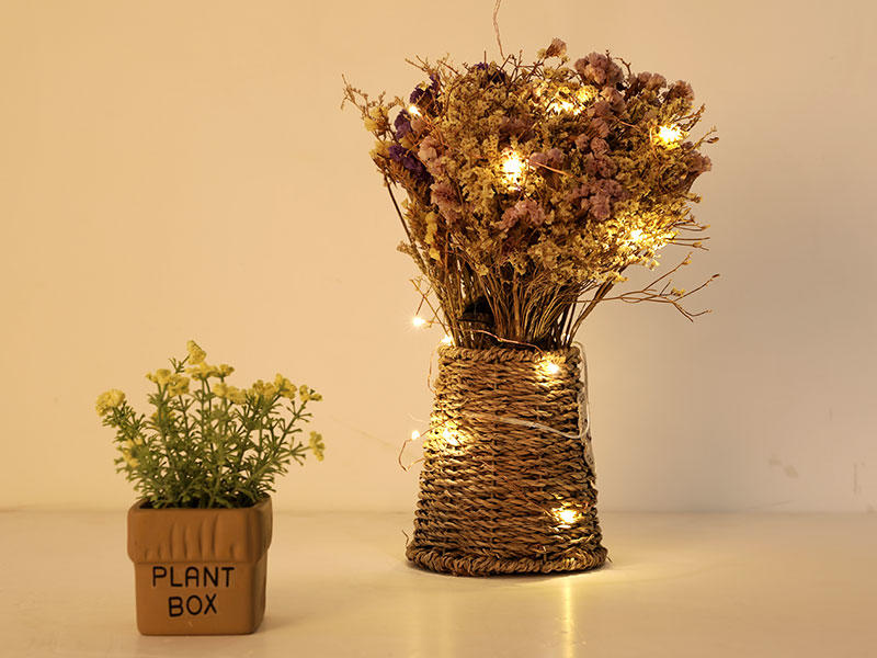 ILED operated battery powered fairy lights supplier for Christmas-1
