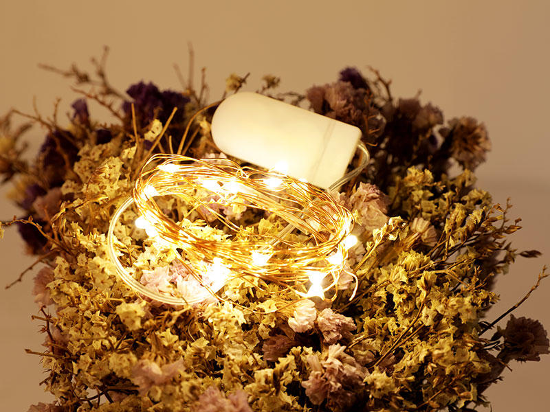 ILED operated battery powered fairy lights supplier for Christmas-2