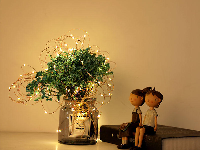 remote battery powered fairy lights manufacturer for indoor