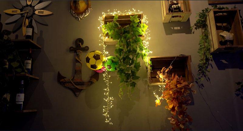 LED fairy light  cracker