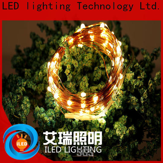 ILED battery string light supplier for Christmas