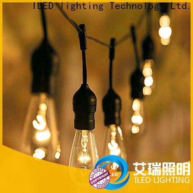 110v garden string lights supplier for garden