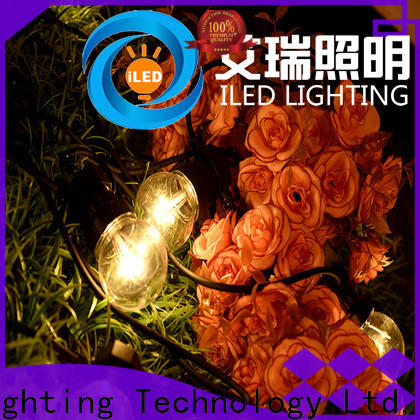 ILED festoon commercial string lights design for indoor