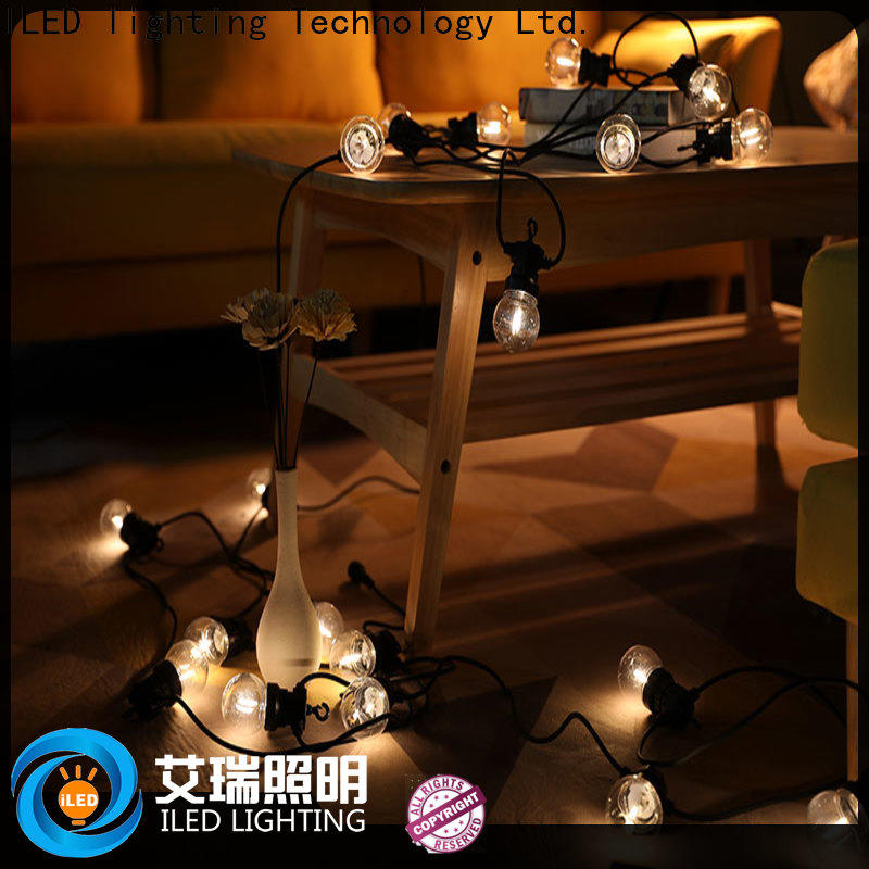low voltage coloured festoon lights design for christmas