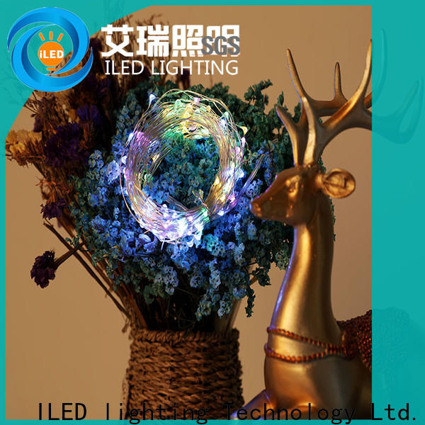 ILED copper wire fairy lights design for decoration