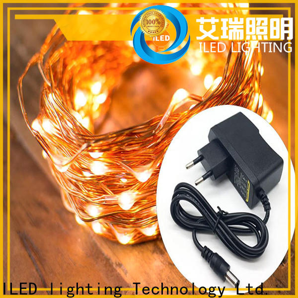 ILED plug in copper wire lights supplier for party
