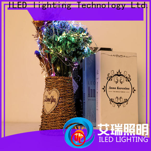 ILED copper wire lights battery operated manufacturer for indoor