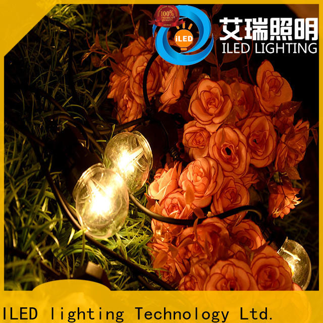 ILED white festoon string lights lamp for festival